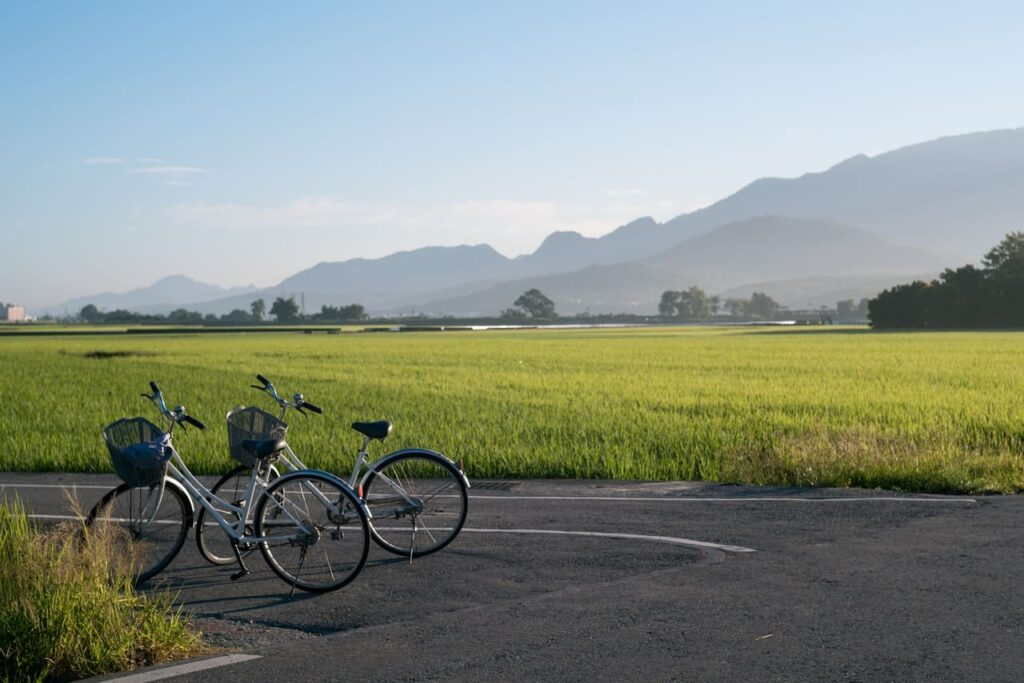 Bicicleta FabricBike gris