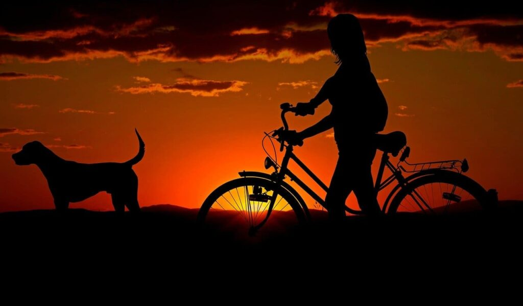 luces para bicicleta de noche